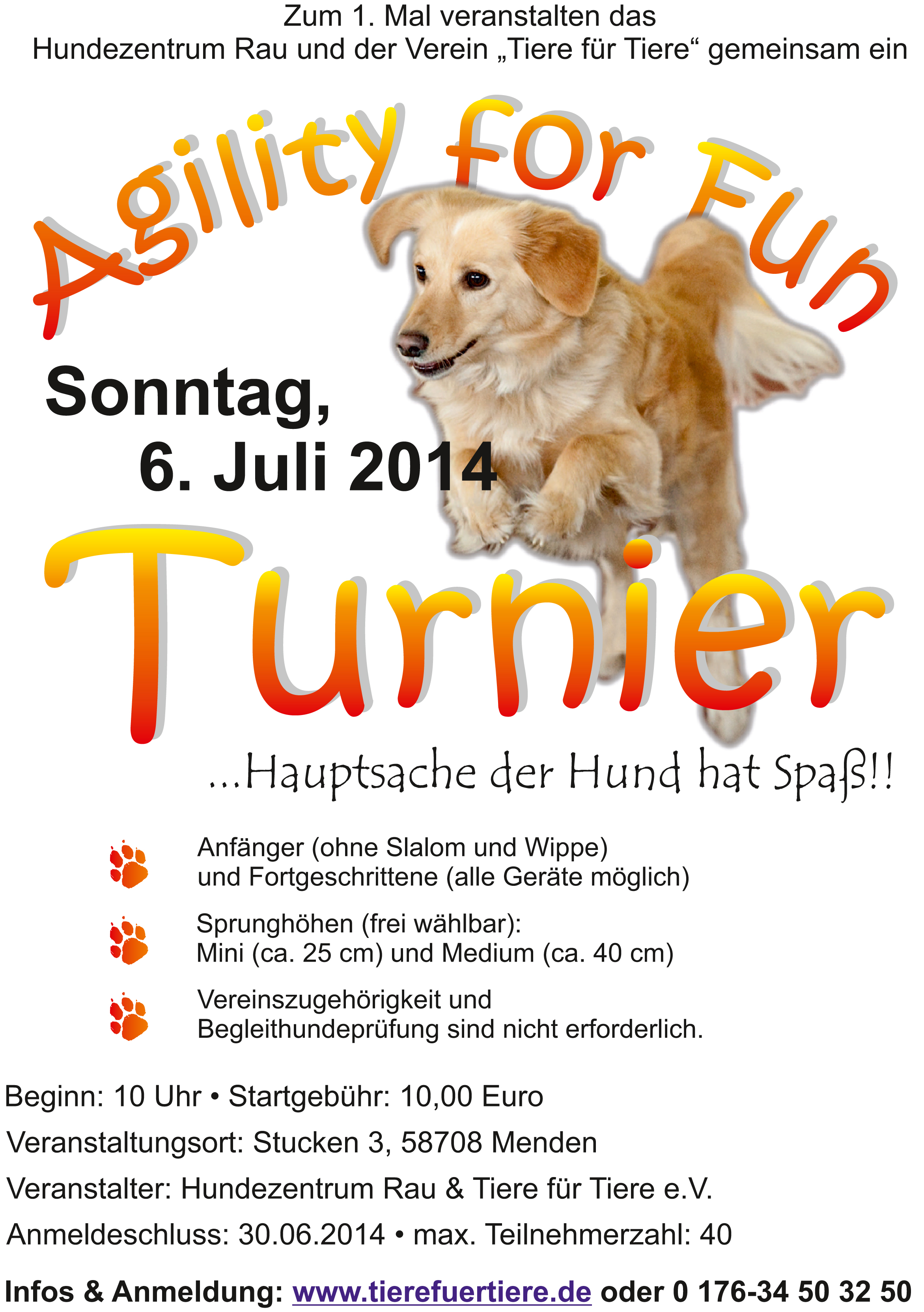 Flyer Agi Fun Turnier 2014